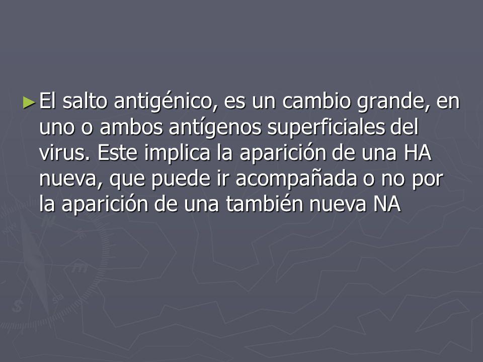 El salto antigénico, es un cambio grande, en uno o ambos antígenos superficiales del virus.