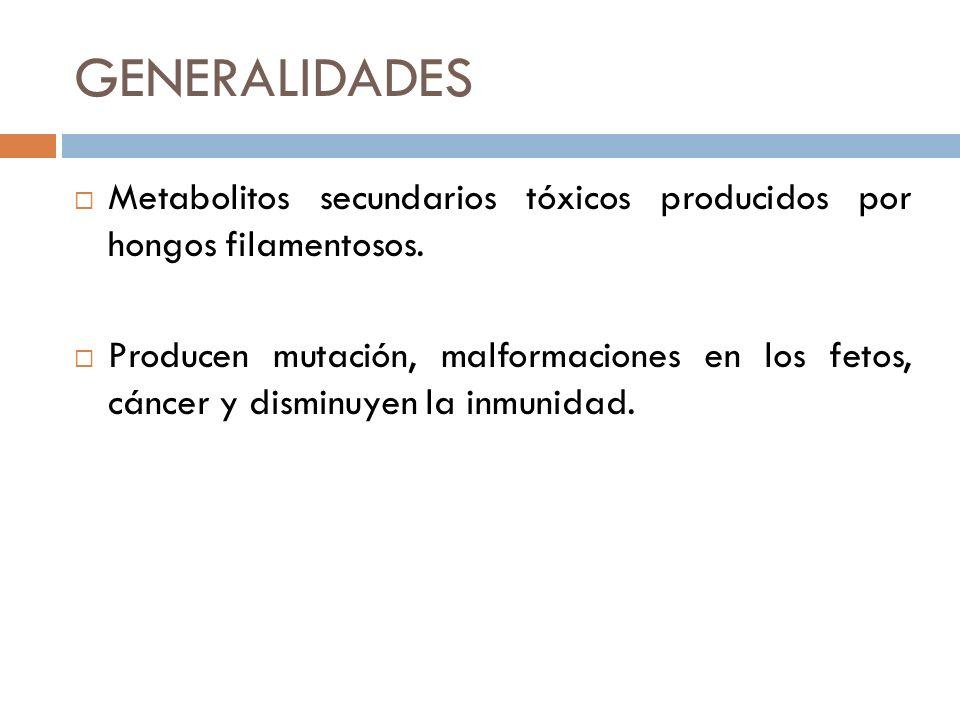 GENERALIDADES Metabolitos secundarios tóxicos producidos por hongos filamentosos.