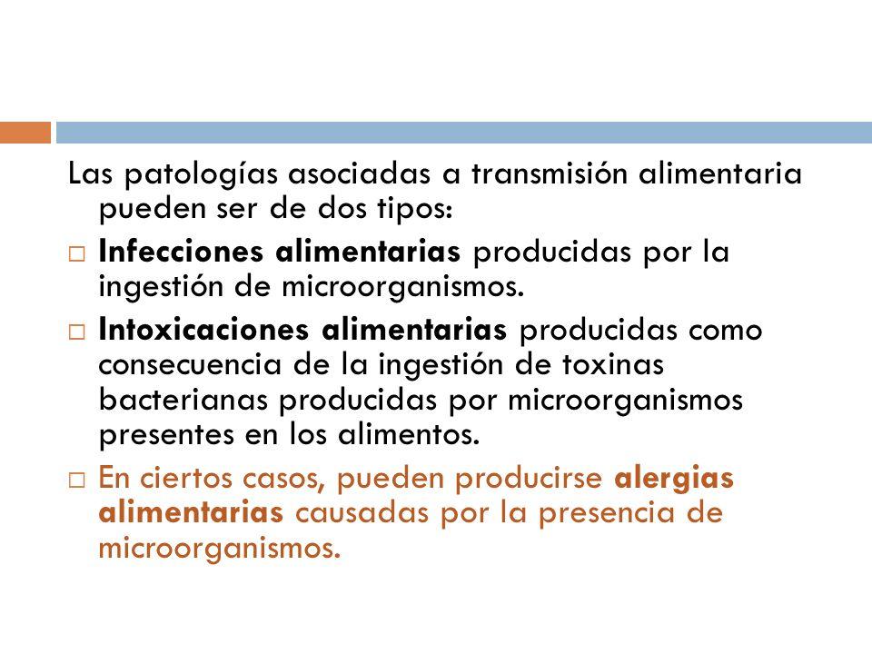 Las patologías asociadas a transmisión alimentaria pueden ser de dos tipos: