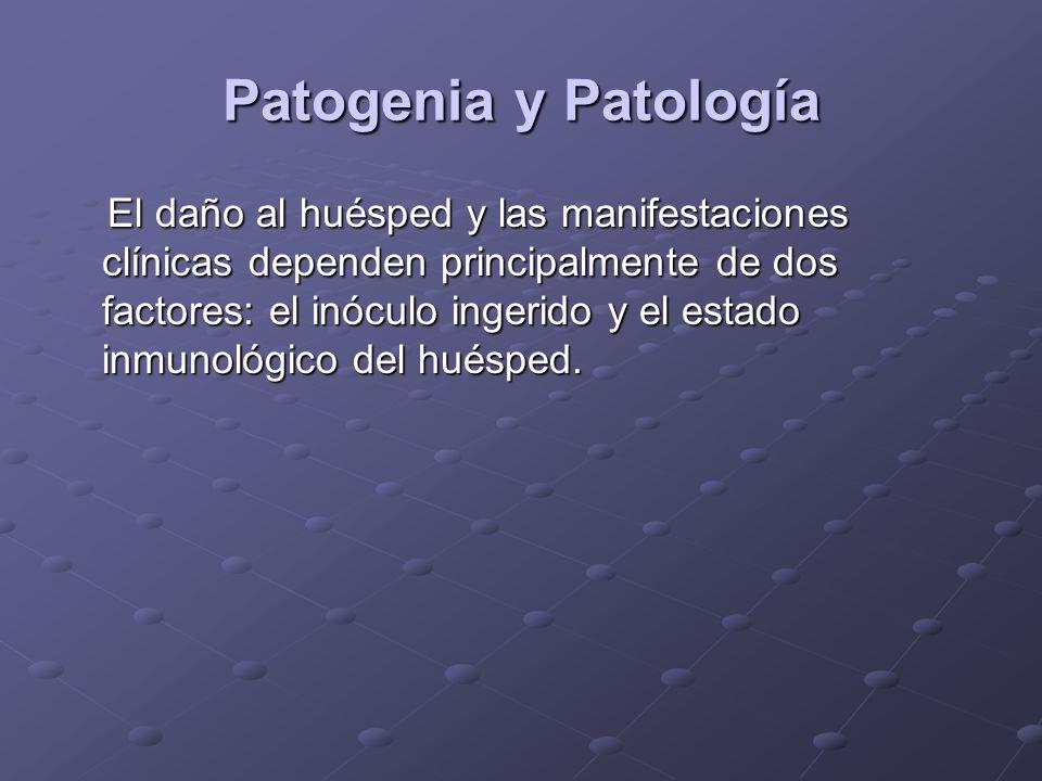 Patogenia y Patología