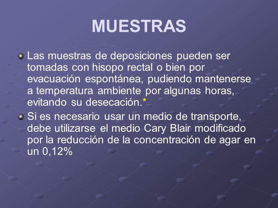 MUESTRAS