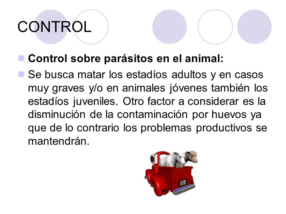 CONTROL Control sobre parásitos en el animal: