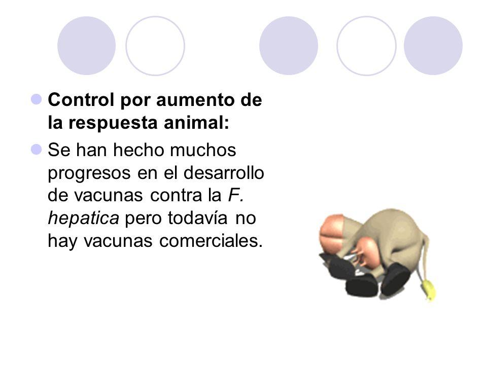 Control por aumento de la respuesta animal: