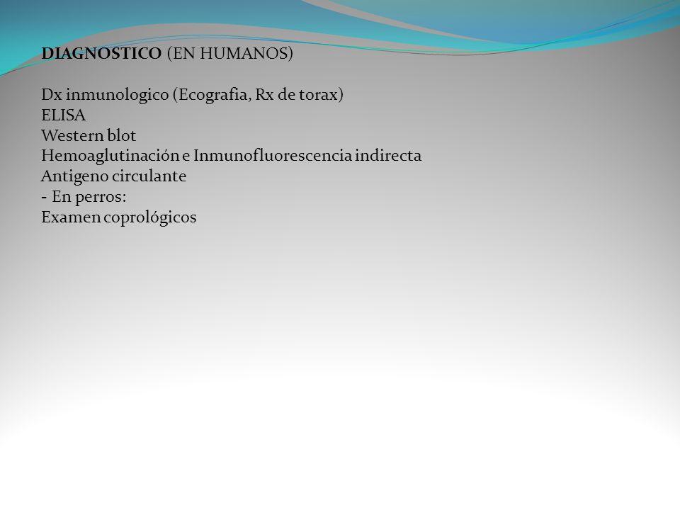 DIAGNOSTICO (EN HUMANOS)