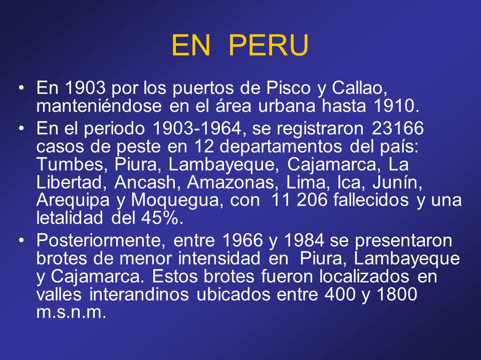 EN PERU En 1903 por los puertos de Pisco y Callao, manteniéndose en el área urbana hasta 1910.