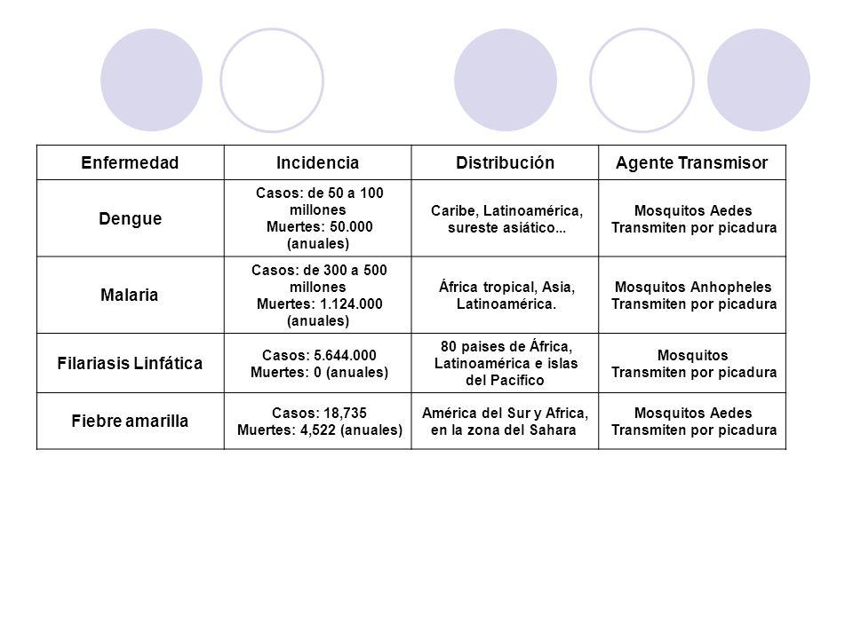 Enfermedad Incidencia Distribución Agente Transmisor Dengue Malaria