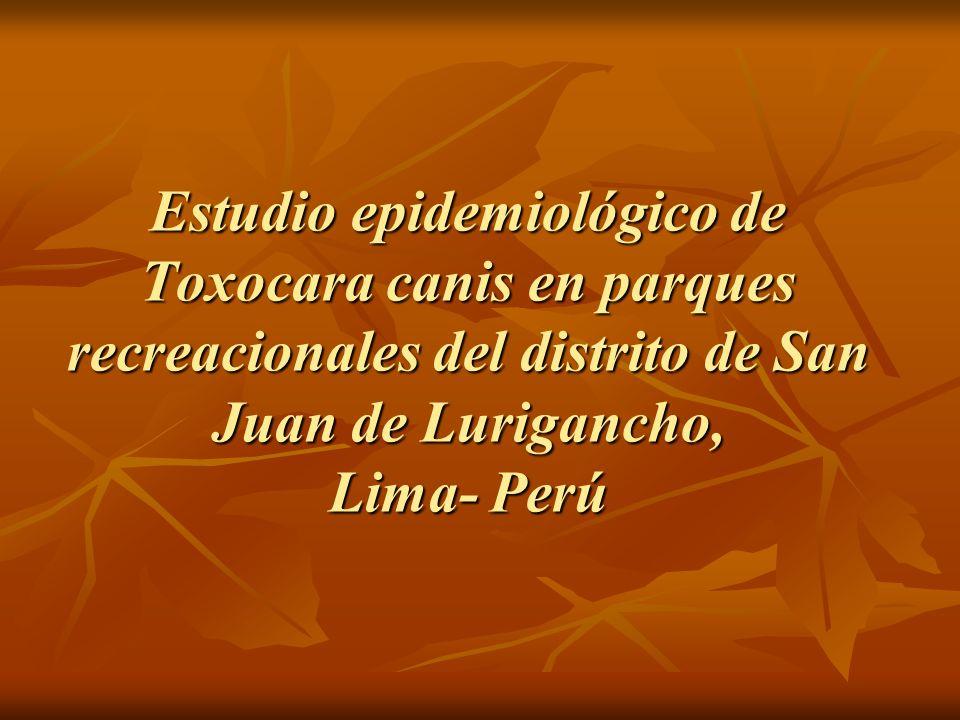 Estudio epidemiológico de Toxocara canis en parques recreacionales del distrito de San Juan de Lurigancho, Lima- Perú