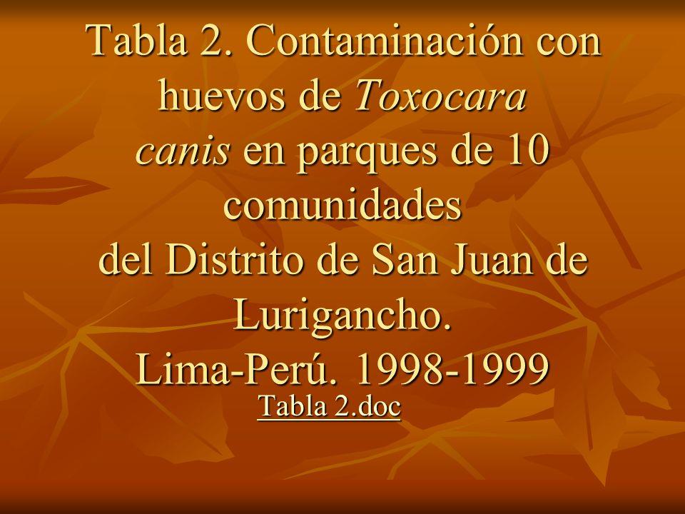 Tabla 2. Contaminación con huevos de Toxocara canis en parques de 10 comunidades del Distrito de San Juan de Lurigancho. Lima-Perú. 1998-1999
