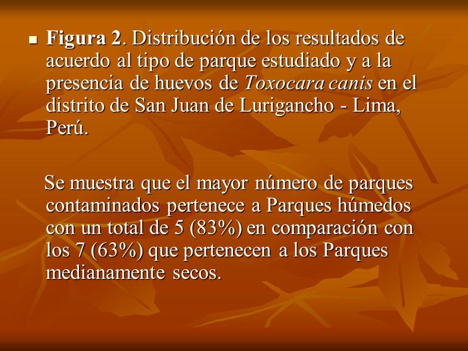 Figura 2. Distribución de los resultados de acuerdo al tipo de parque estudiado y a la presencia de huevos de Toxocara canis en el distrito de San Juan de Lurigancho - Lima, Perú.