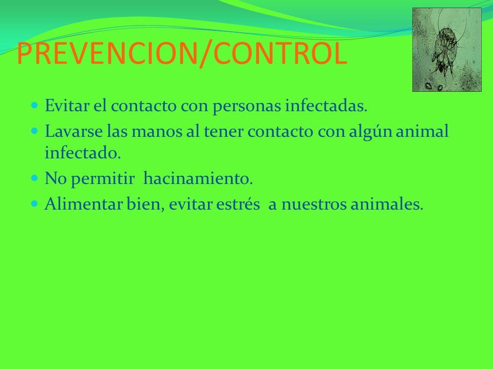 PREVENCION/CONTROL Evitar el contacto con personas infectadas.