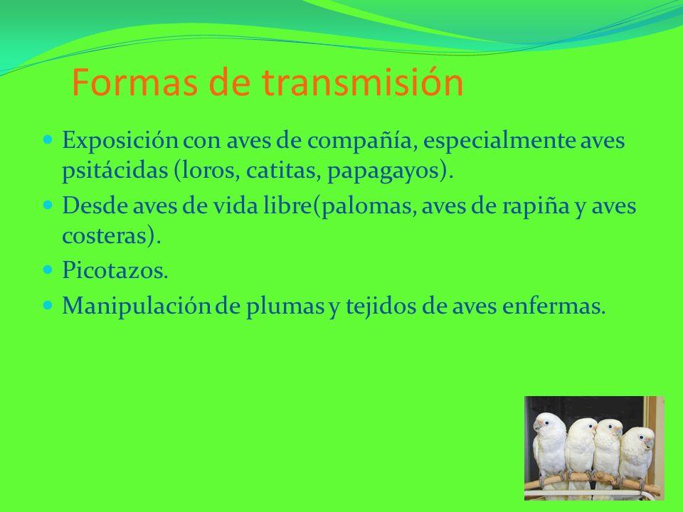 Formas de transmisión Exposición con aves de compañía, especialmente aves psitácidas (loros, catitas, papagayos).
