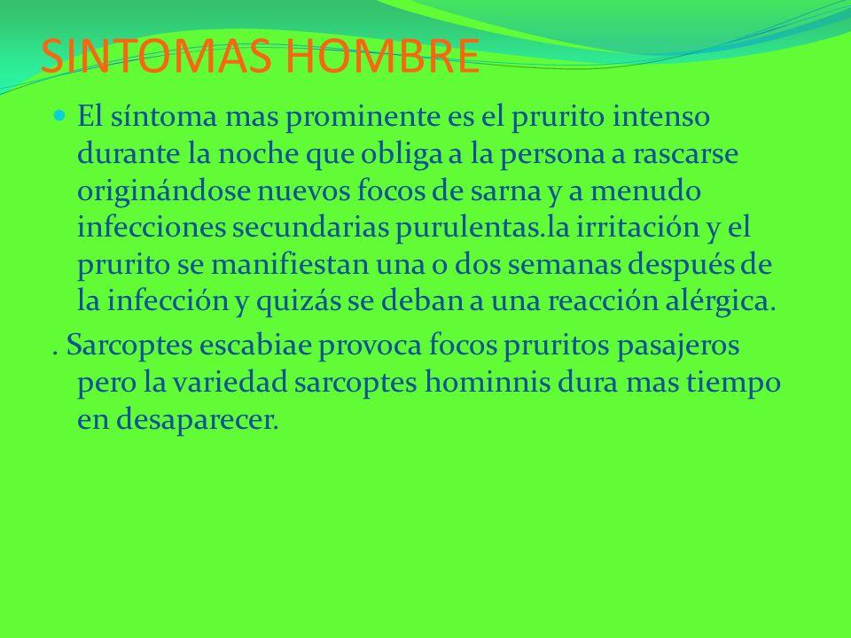 SINTOMAS HOMBRE