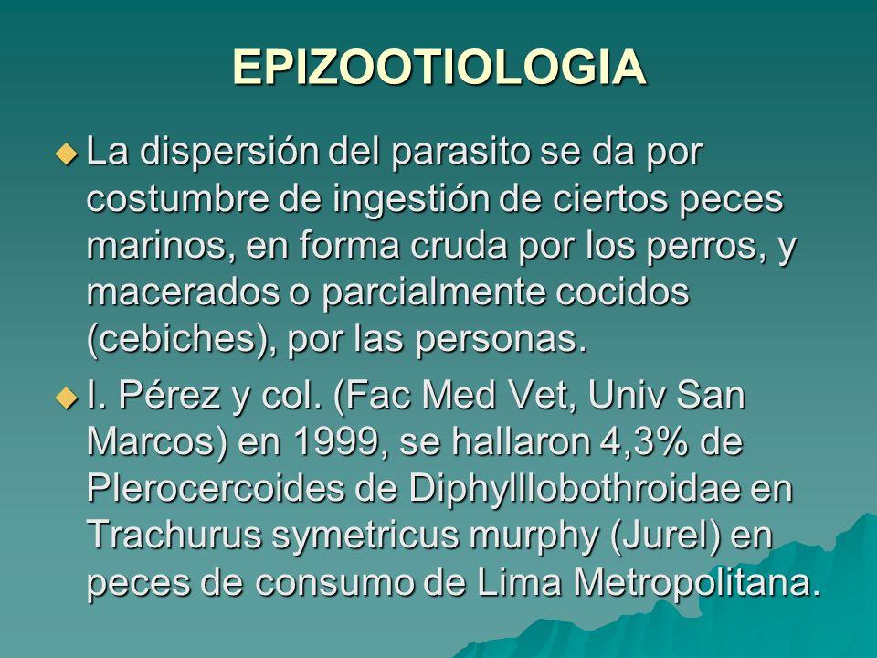 EPIZOOTIOLOGIA