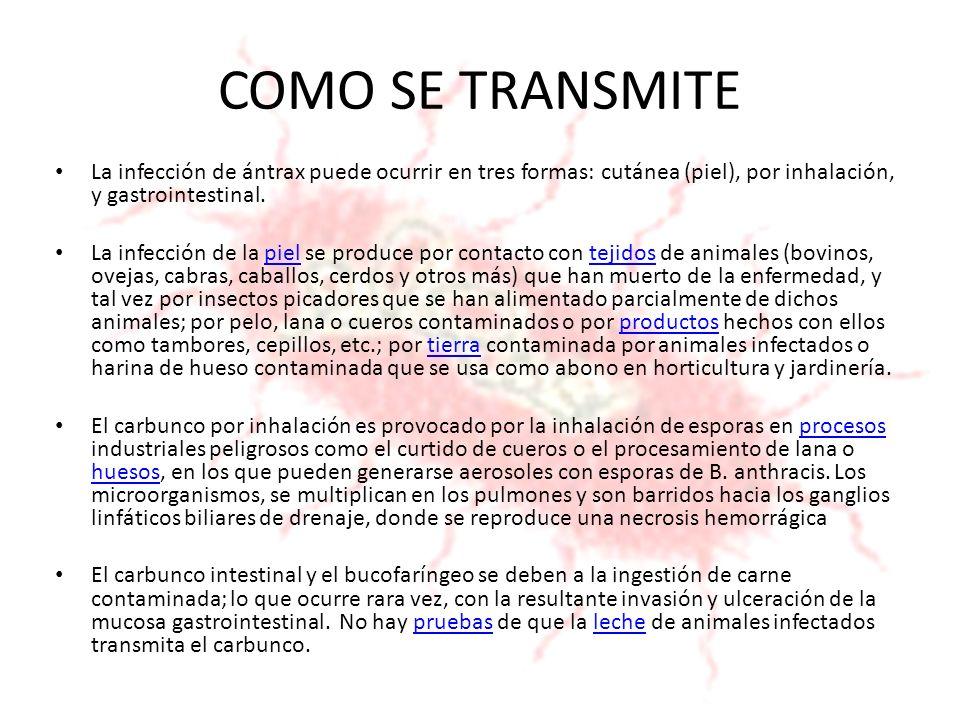 COMO SE TRANSMITELa infección de ántrax puede ocurrir en tres formas: cutánea (piel), por inhalación, y gastrointestinal.