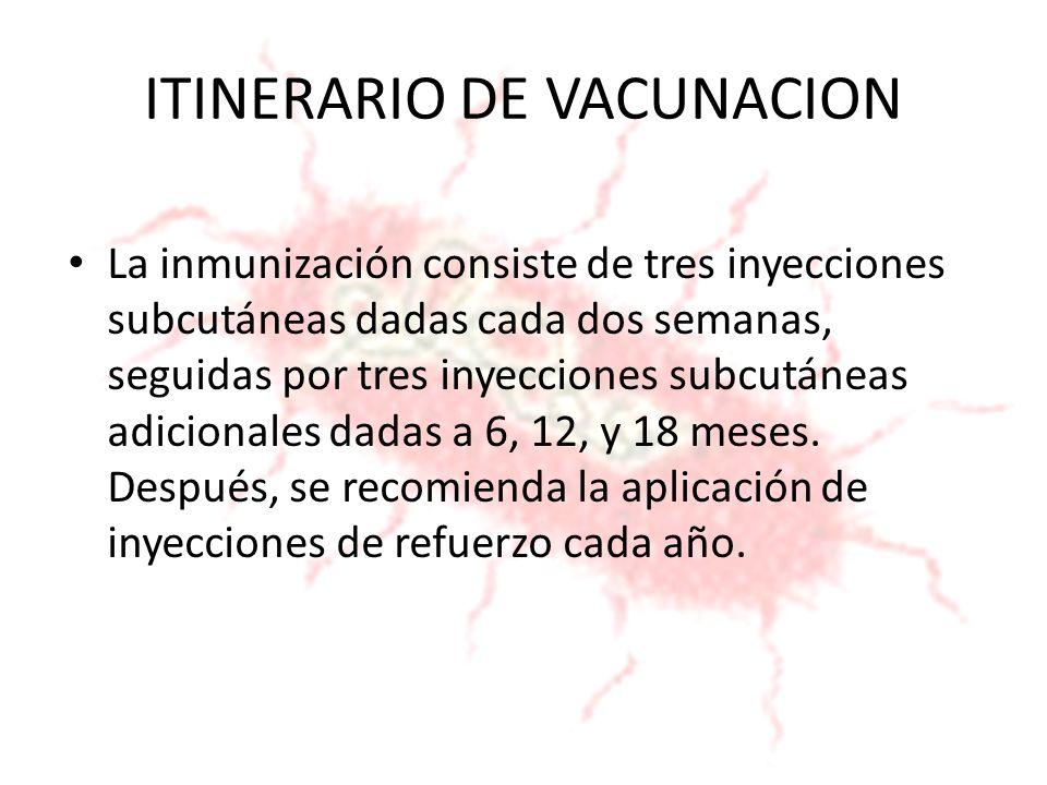 ITINERARIO DE VACUNACION