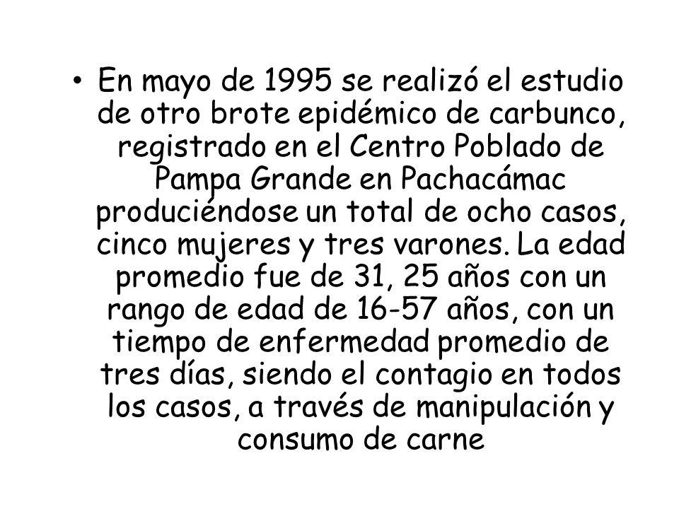 En mayo de 1995 se realizó el estudio de otro brote epidémico de carbunco, registrado en el Centro Poblado de Pampa Grande en Pachacámac produciéndose un total de ocho casos, cinco mujeres y tres varones.