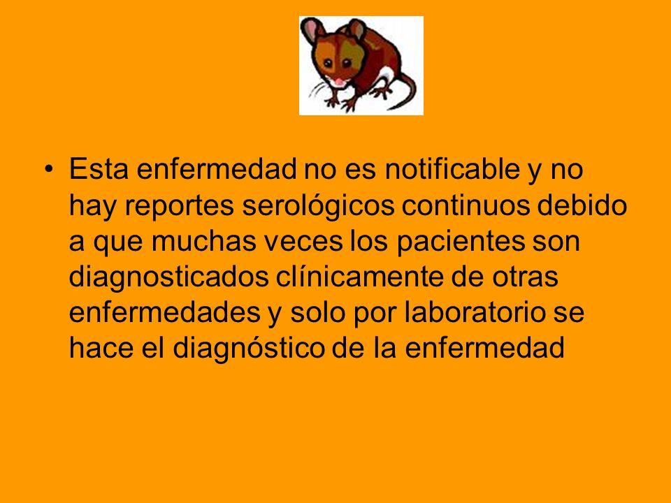Esta enfermedad no es notificable y no hay reportes serológicos continuos debido a que muchas veces los pacientes son diagnosticados clínicamente de otras enfermedades y solo por laboratorio se hace el diagnóstico de la enfermedad