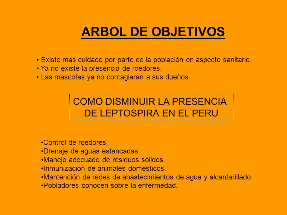 ARBOL DE OBJETIVOS COMO DISMINUIR LA PRESENCIA