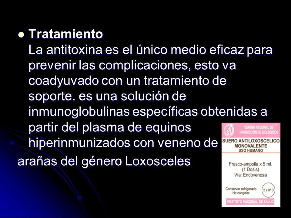 Tratamiento La antitoxina es el único medio eficaz para prevenir las complicaciones, esto va coadyuvado con un tratamiento de soporte. es una solución de inmunoglobulinas específicas obtenidas a partir del plasma de equinos hiperinmunizados con veneno de