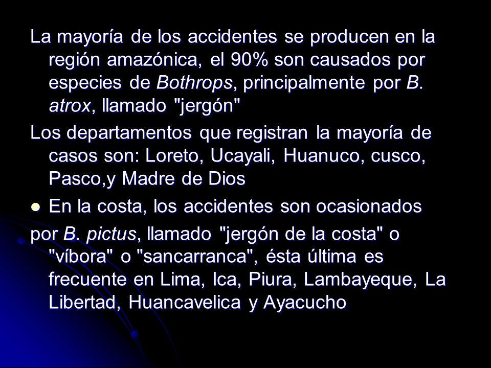 La mayoría de los accidentes se producen en la región amazónica, el 90% son causados por especies de Bothrops, principalmente por B. atrox, llamado jergón