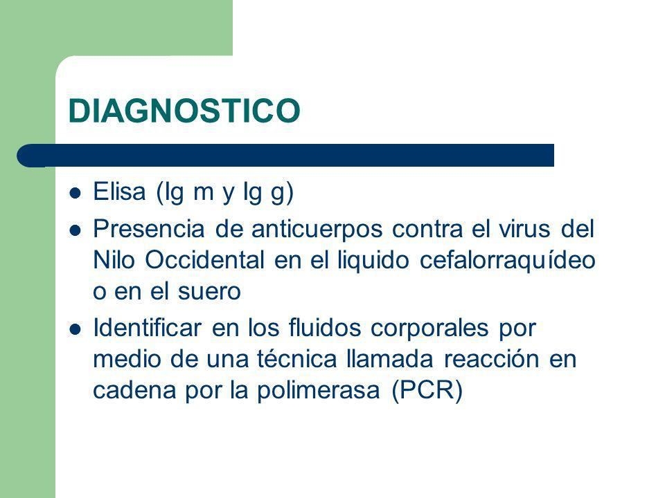 DIAGNOSTICO Elisa (Ig m y Ig g)