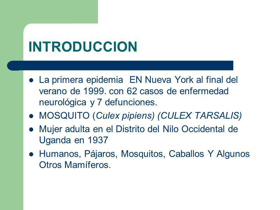 INTRODUCCION La primera epidemia EN Nueva York al final del verano de 1999. con 62 casos de enfermedad neurológica y 7 defunciones.