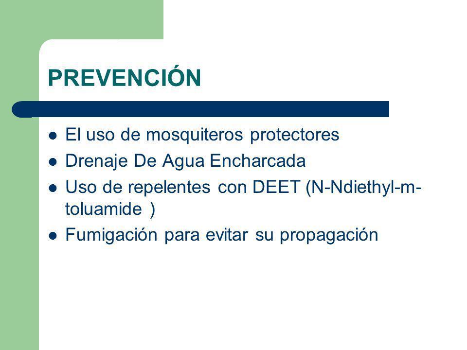 PREVENCIÓN El uso de mosquiteros protectores