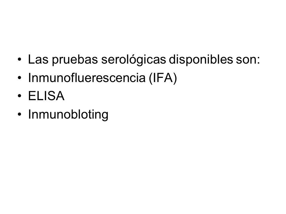 Las pruebas serológicas disponibles son: