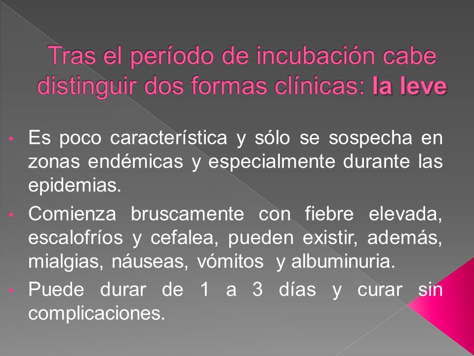 Tras el período de incubación cabe distinguir dos formas clínicas: la leve