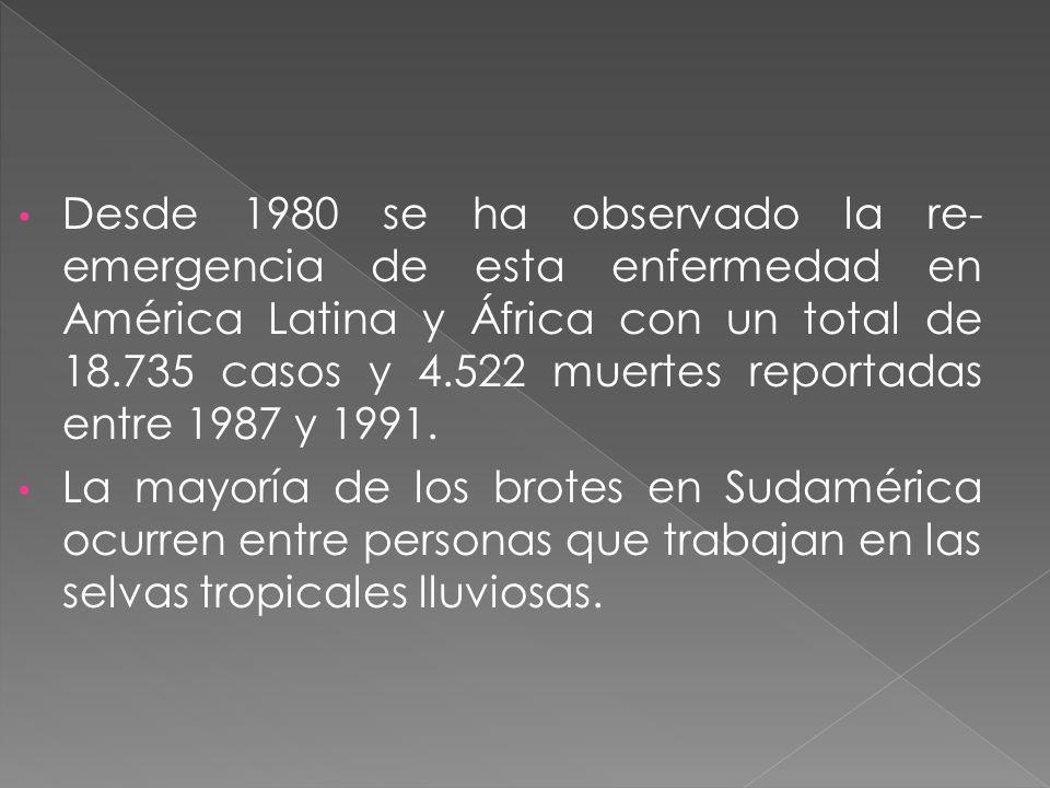 Desde 1980 se ha observado la re-emergencia de esta enfermedad en América Latina y África con un total de 18.735 casos y 4.522 muertes reportadas entre 1987 y 1991.