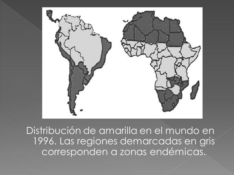 Distribución de amarilla en el mundo en 1996