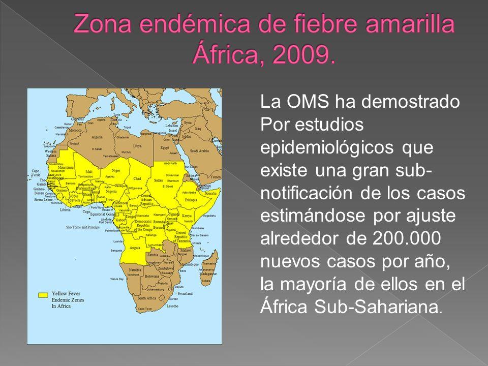 Zona endémica de fiebre amarilla África, 2009.