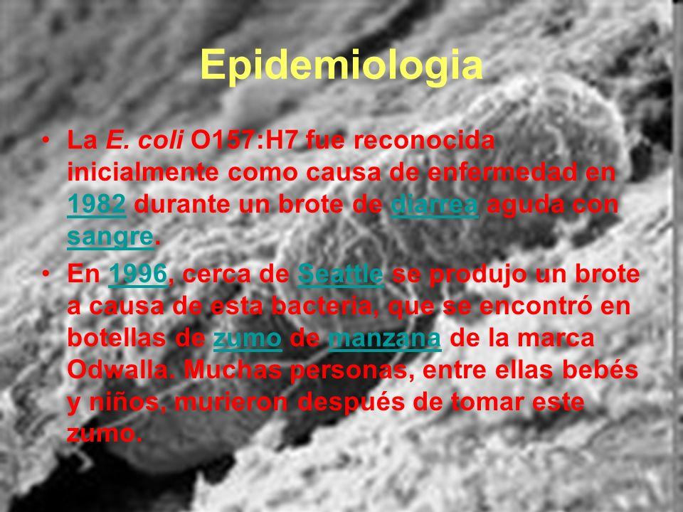 Epidemiologia La E. coli O157:H7 fue reconocida inicialmente como causa de enfermedad en 1982 durante un brote de diarrea aguda con sangre.