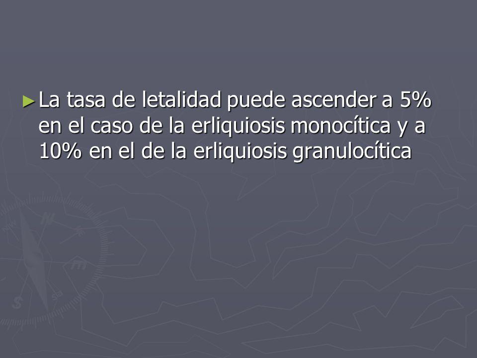 La tasa de letalidad puede ascender a 5% en el caso de la erliquiosis monocítica y a 10% en el de la erliquiosis granulocítica