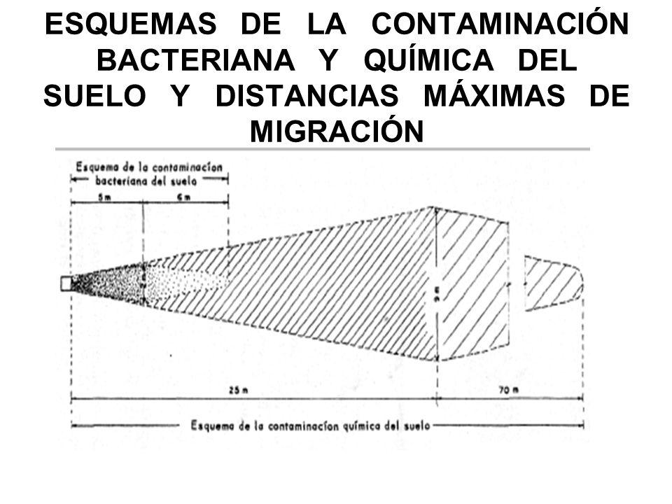 ESQUEMAS DE LA CONTAMINACIÓN BACTERIANA Y QUÍMICA DEL SUELO Y DISTANCIAS MÁXIMAS DE MIGRACIÓN