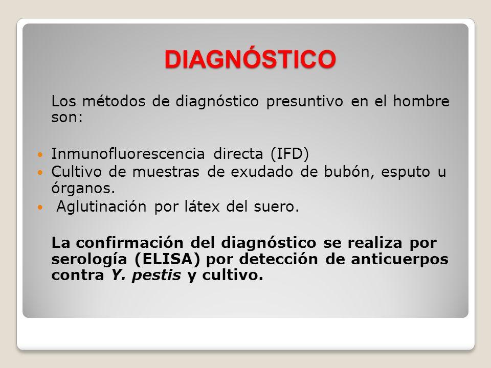 DIAGNÓSTICO Los métodos de diagnóstico presuntivo en el hombre son: