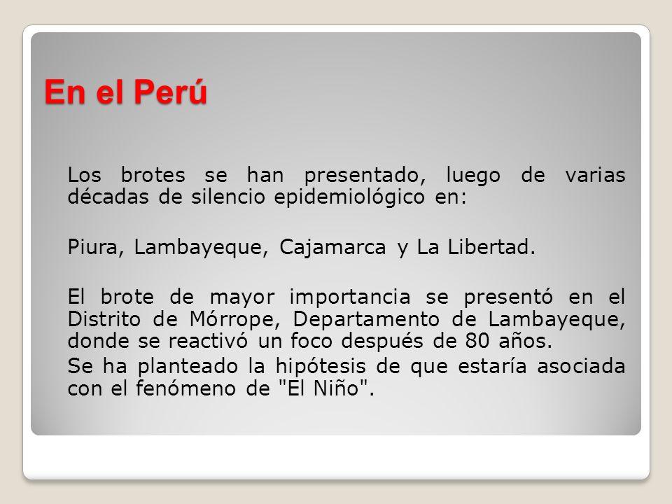 En el Perú Los brotes se han presentado, luego de varias décadas de silencio epidemiológico en: Piura, Lambayeque, Cajamarca y La Libertad.