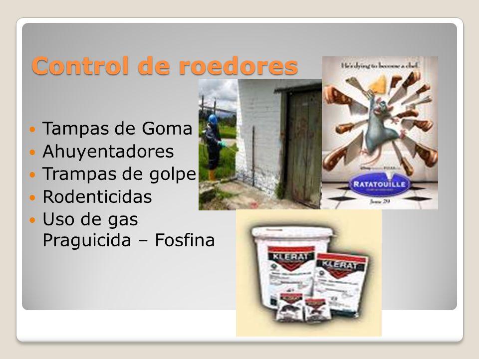 Control de roedores Tampas de Goma Ahuyentadores Trampas de golpe