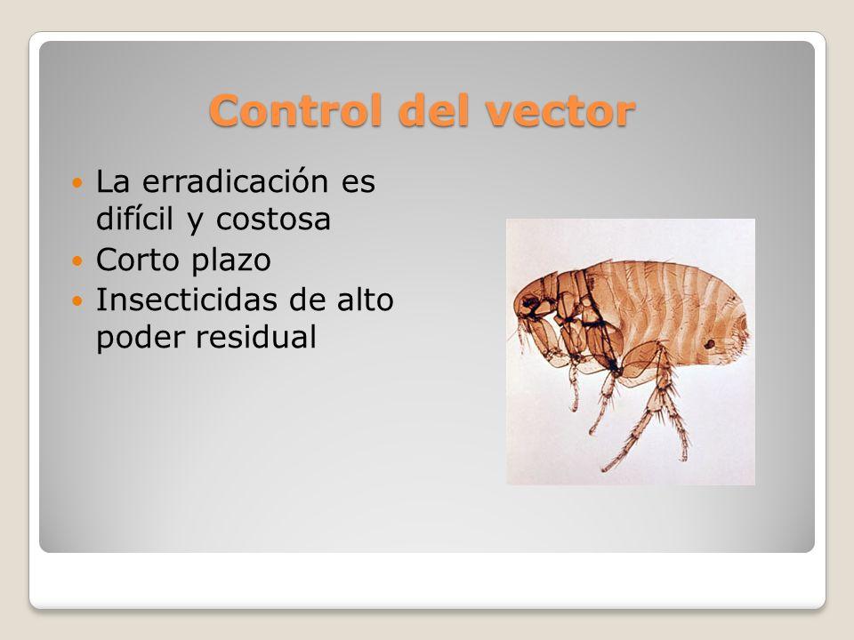 Control del vector La erradicación es difícil y costosa Corto plazo