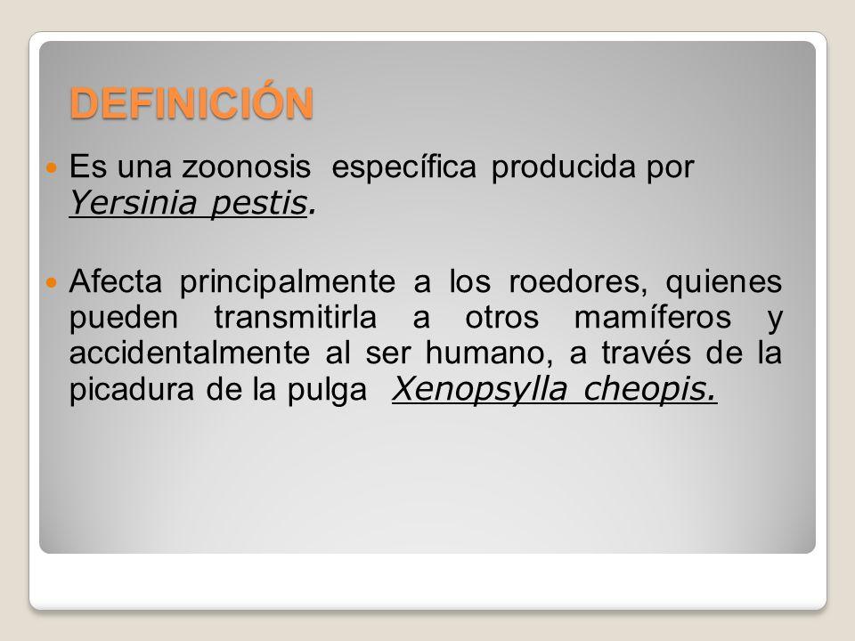 DEFINICIÓN Es una zoonosis específica producida por Yersinia pestis.