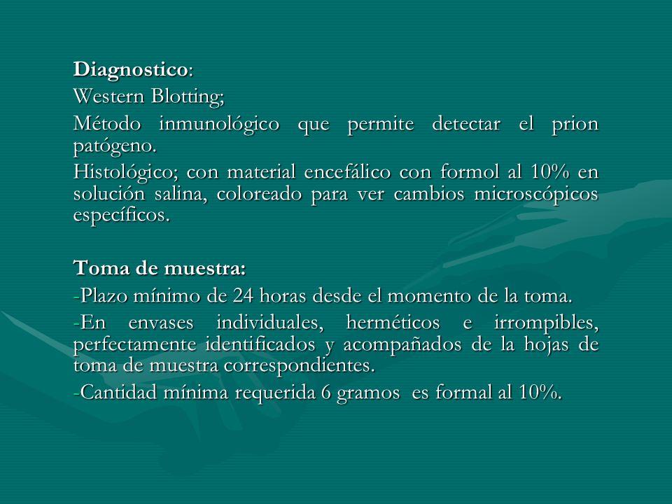 Diagnostico: Western Blotting; Método inmunológico que permite detectar el prion patógeno.