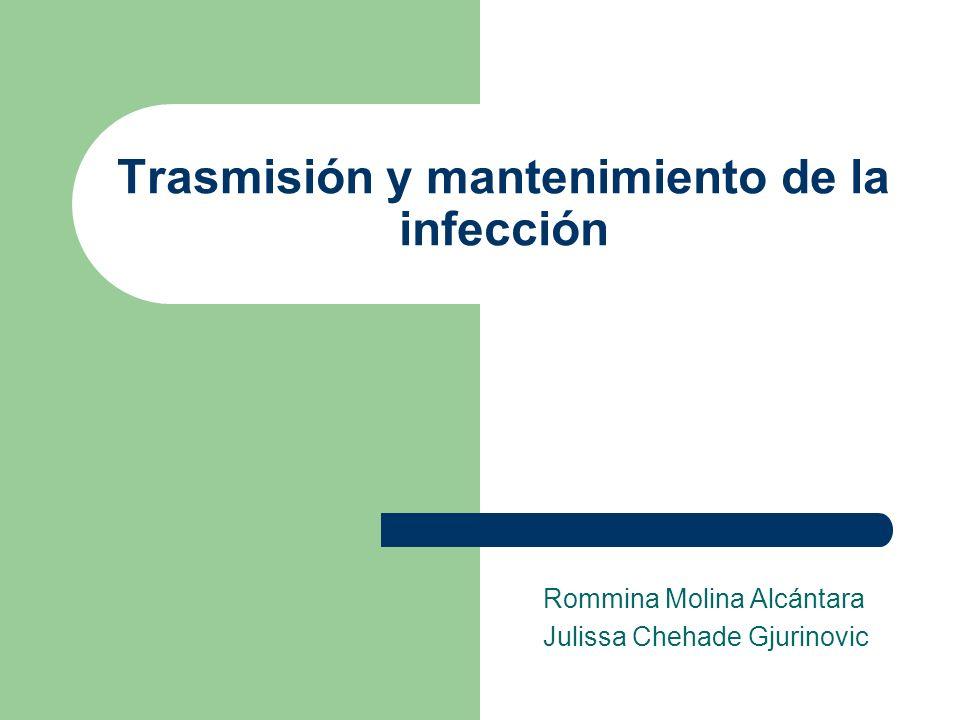 Trasmisión y mantenimiento de la infección