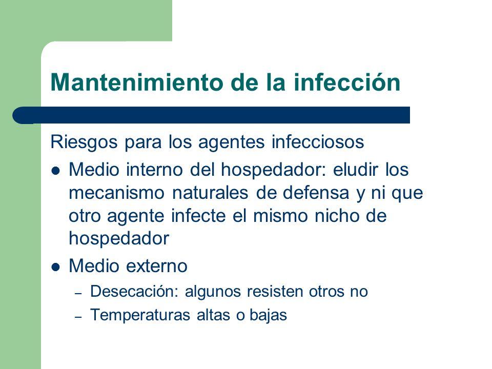 Mantenimiento de la infección