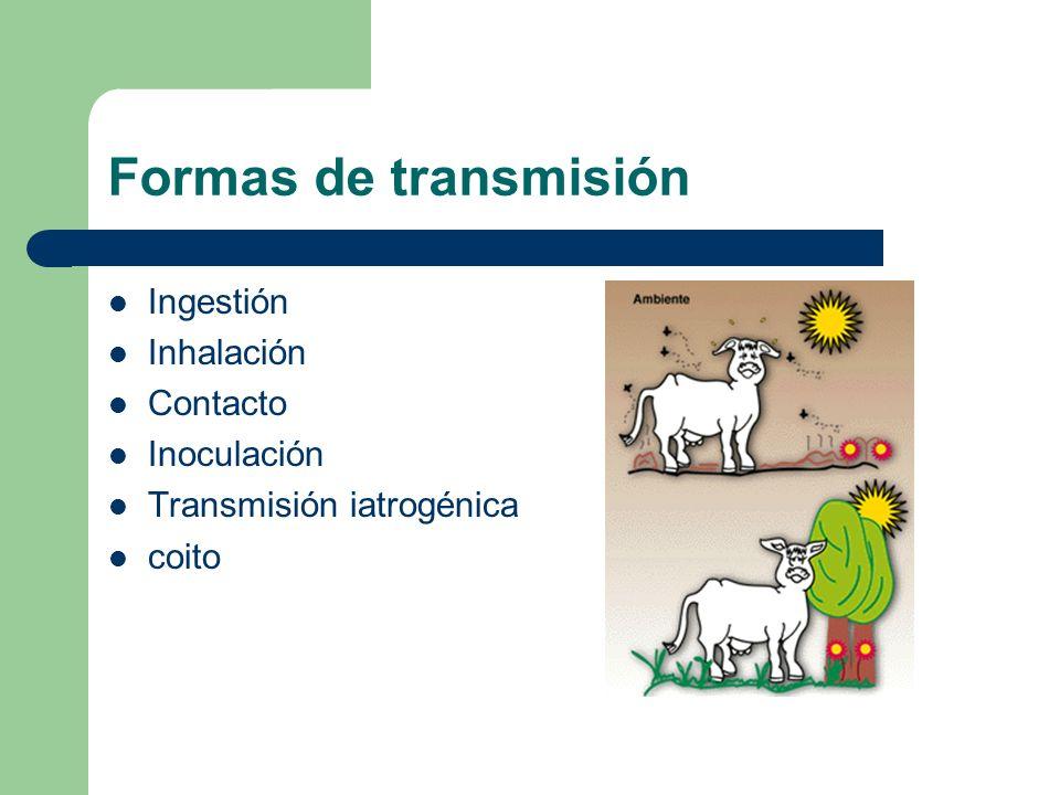 Formas de transmisión Ingestión Inhalación Contacto Inoculación
