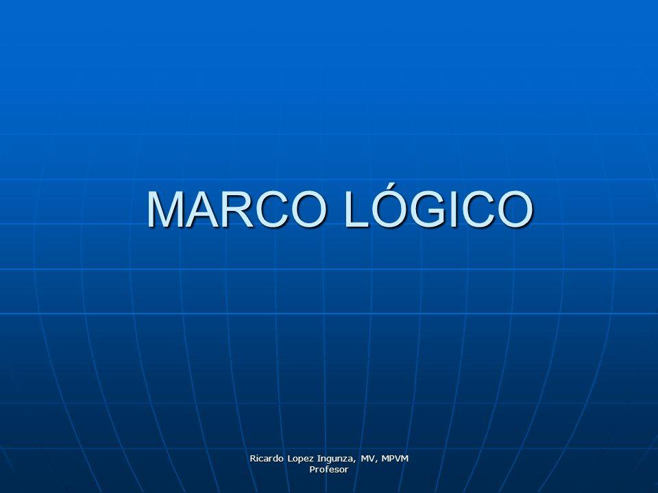 Ricardo Lopez Ingunza, MV, MPVM Profesor