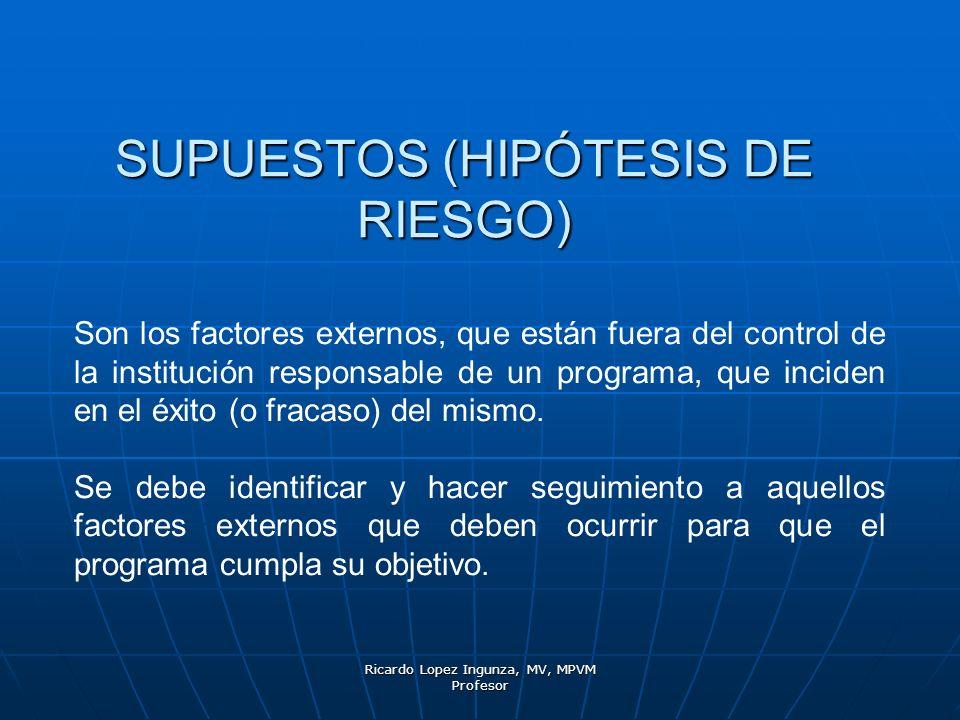 SUPUESTOS (HIPÓTESIS DE RIESGO)