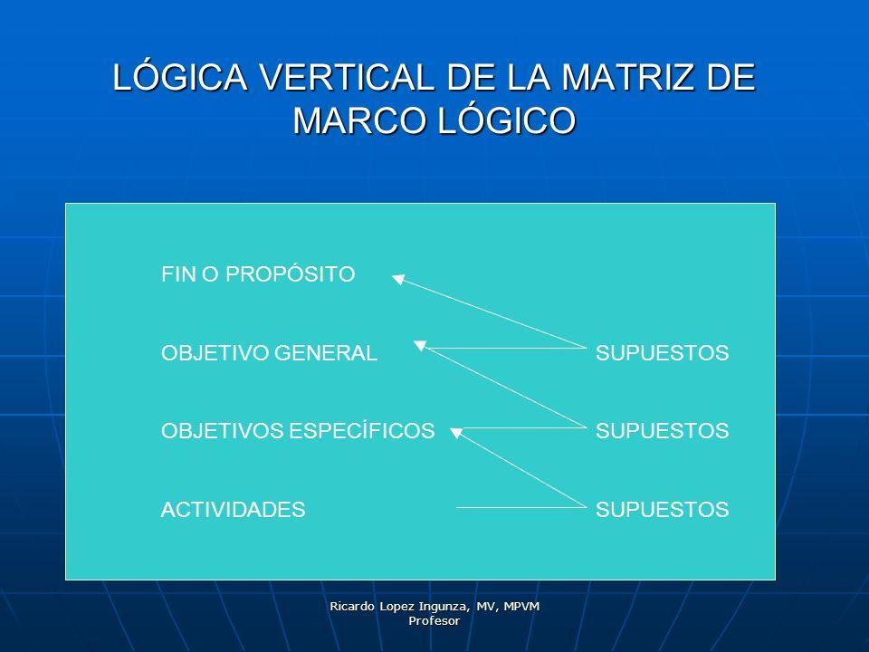 LÓGICA VERTICAL DE LA MATRIZ DE MARCO LÓGICO