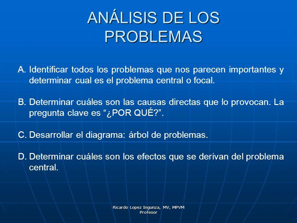 ANÁLISIS DE LOS PROBLEMAS