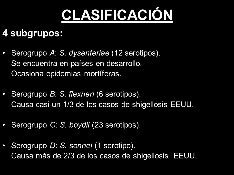 CLASIFICACIÓN 4 subgrupos: Serogrupo A: S. dysenteriae (12 serotipos).