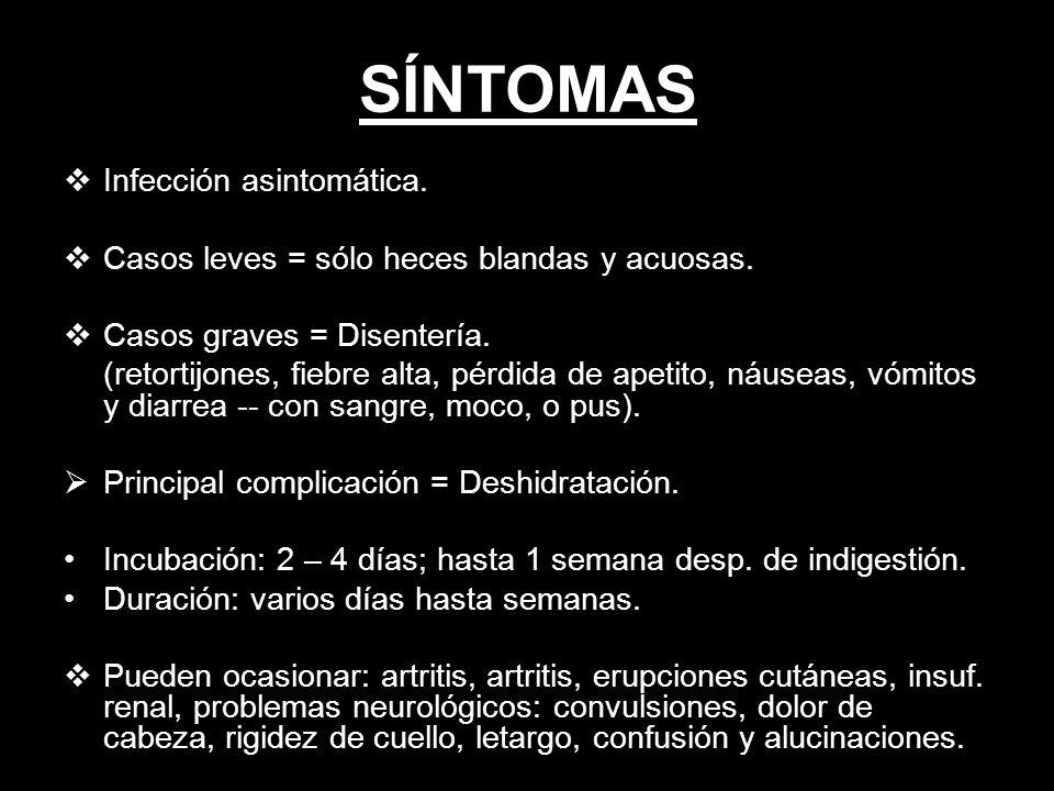 SÍNTOMAS Infección asintomática.